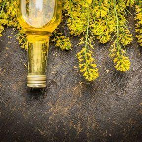 Huile de colza : un équilibre presque parfait