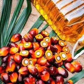 L'huile de palme : cachée dans les aliments industriels
