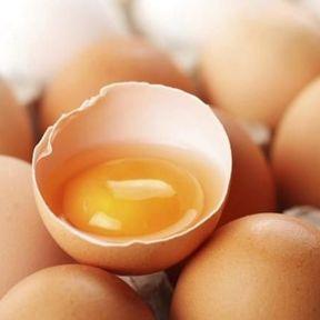 Le jaune d'œuf