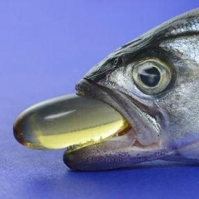 Les huiles à base de foie de poisson