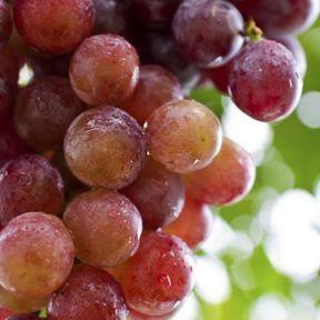 Le raisin noir