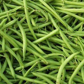 Les haricots verts
