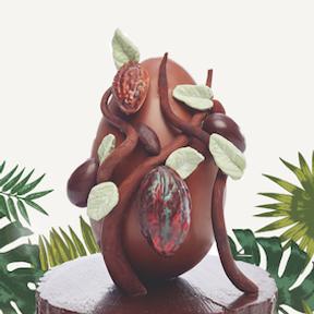 L'œuf cacaoyer, Jadis et gourmande- Nouveauté 2019