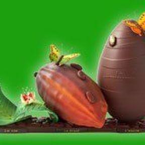 La vie, le fruit, et l'envie...- La maison du chocolat