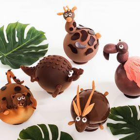 Le safari chocolaté, Nicolas Bernardé- Nouveauté 2019