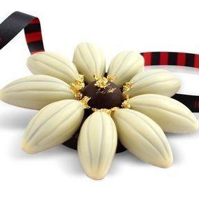 La marguerite en chocolat
