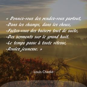Citation de Louis Chedid