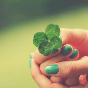 Le trèfle, talisman amoureux en Irlande
