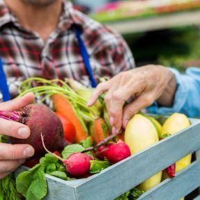 Misez sur les fruits et les légumes