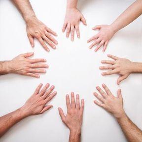 L'évolution de la main