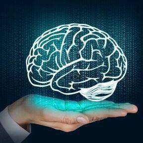 On n'utilise que 10 % de notre cerveau