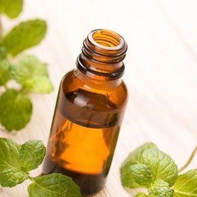 Des hydrolats aromatiques