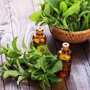Un stick inhaleur aux huiles essentielles de menthe poivrée et de bergamote