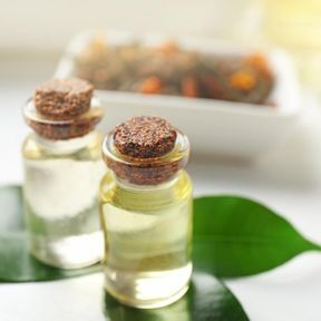 L'huile essentielle de tea tree (arbre à thé)