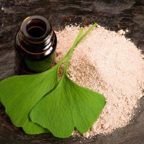L'extrait liquide de gingko biloba