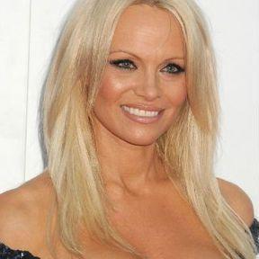 Les seins de Pamela Anderson