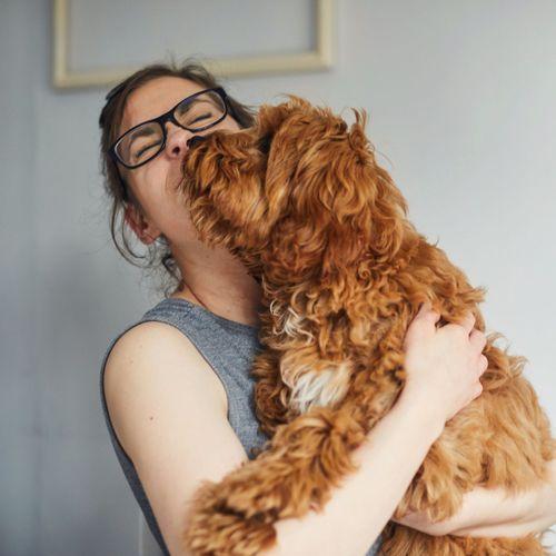 Plus de la moitié des propriétaires de chien l'embrassent plus que leurs partenaires