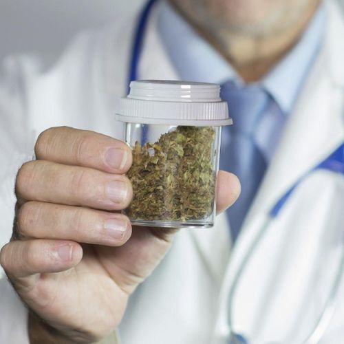 Le cannabis thérapeutique, un marché pharmaceutique encore timide