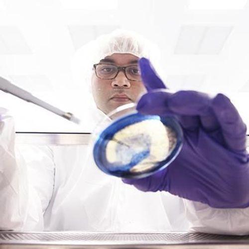 Santé : la résistance aux antimicrobiens reste élevée dans l'UE