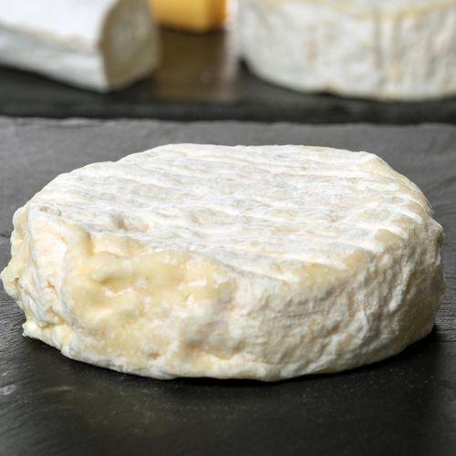 Escherichia coli : rappel massif de fromages Saint Marcellin et Saint-Félicien
