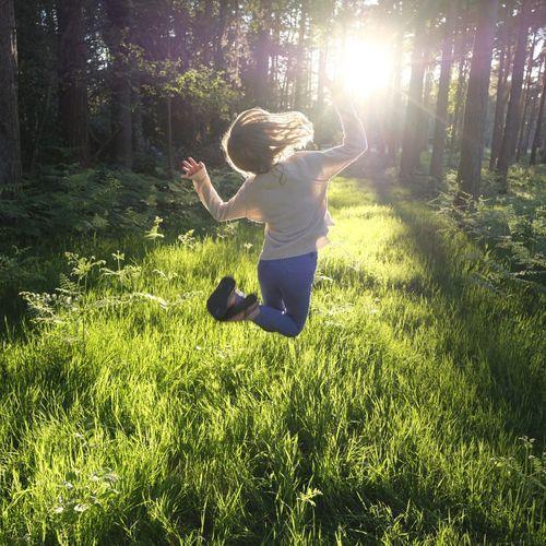 Auprès de son arbre, vivrait-on plus heureux ?