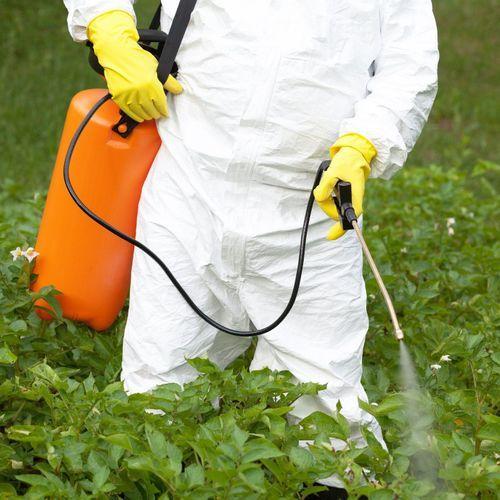 Etes-vous contaminés par le glyphosate ? Faites le test