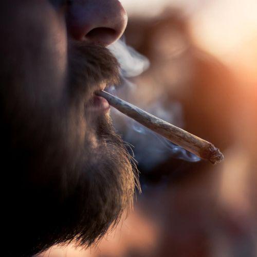 Une étude trouve un lien étonnant entre cannabis et fertilité masculine